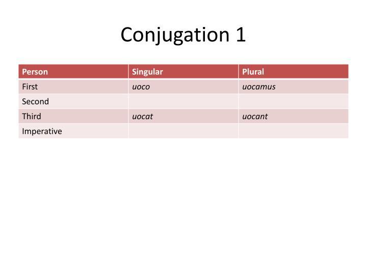 Conjugation 1
