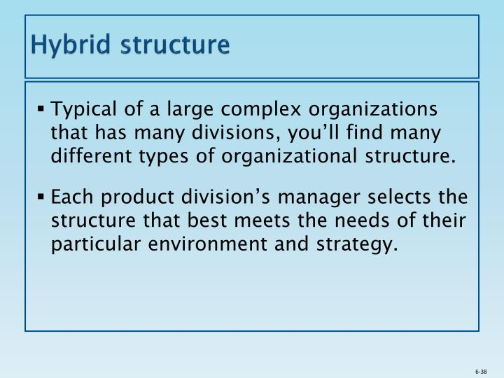 PPT Designing Organizational Structure Specialization And