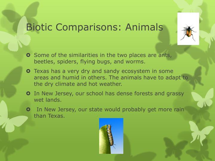 Biotic Comparisons: Animals