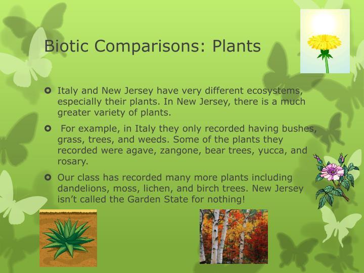 Biotic Comparisons: Plants
