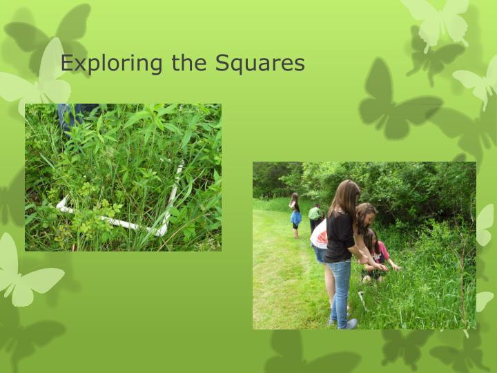 Exploring the Squares