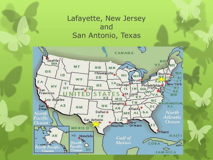 Lafayette, New Jersey