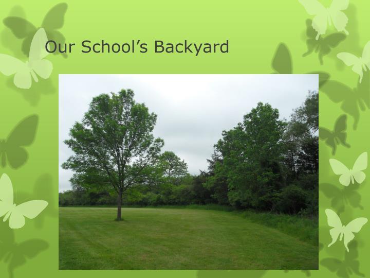 Our school s backyard