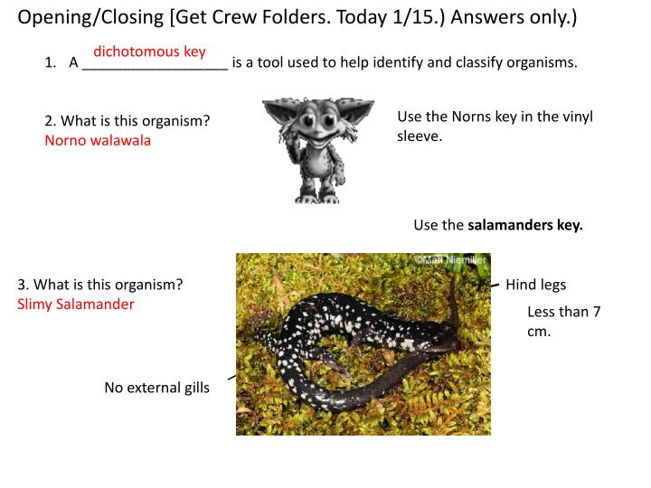 Opening/Closing [Get Crew Folders. Today 1/15.) Answers only.)