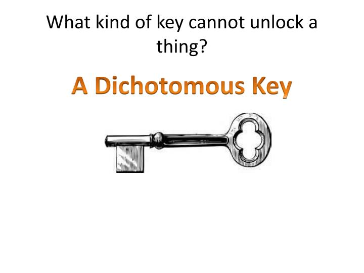 What kind of key cannot unlock a thing?