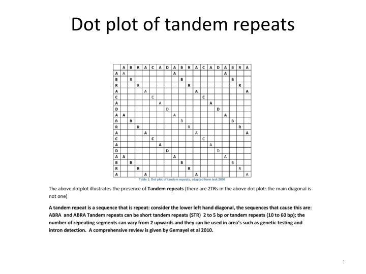 Dot plot of tandem repeats