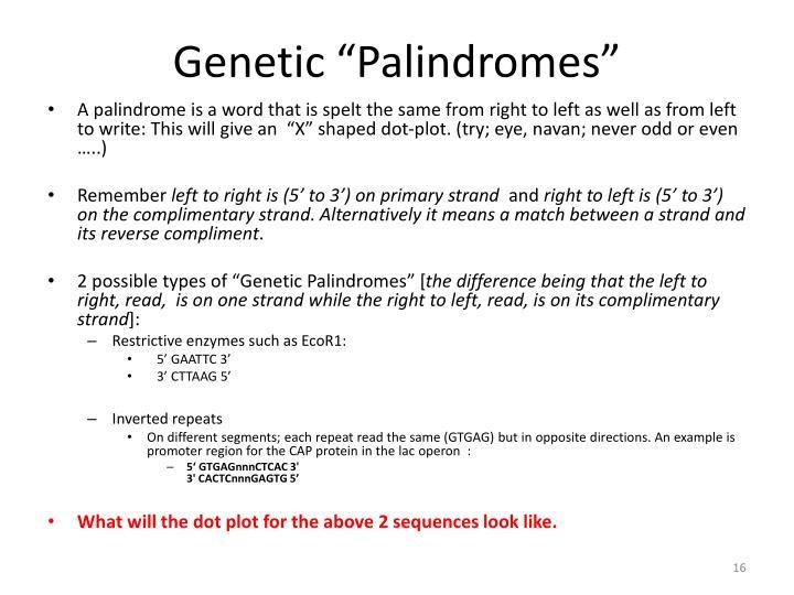 "Genetic ""Palindromes"""
