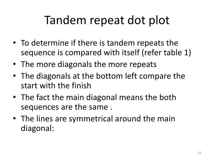 Tandem repeat dot plot