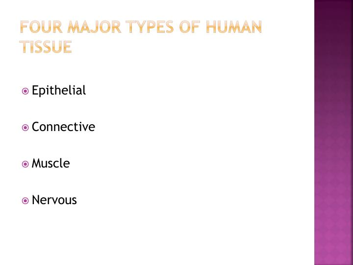 Four Major Types of Human  Tissue