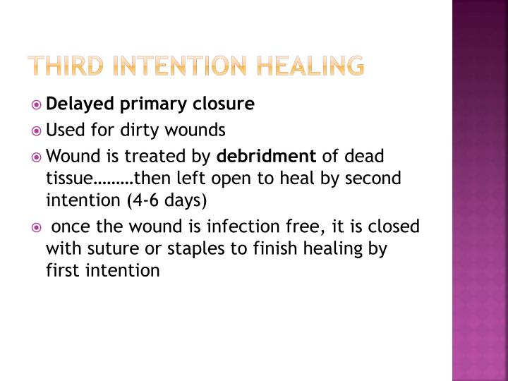 Third Intention Healing