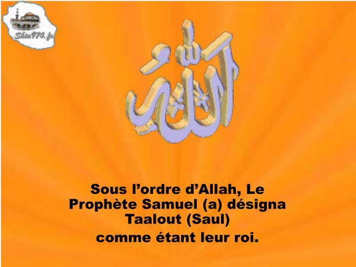 Sous l'ordre d'Allah, Le Prophète Samuel (a) désigna