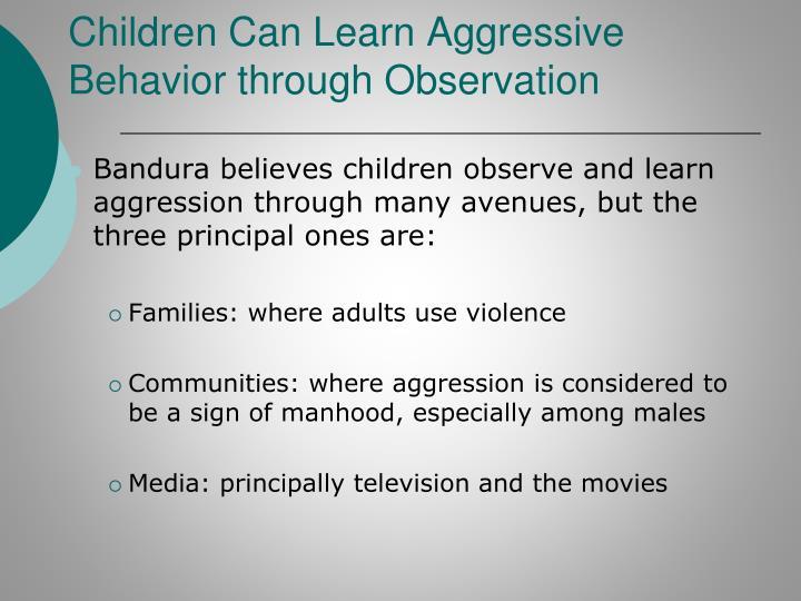 aggreession as a learnt behaviour