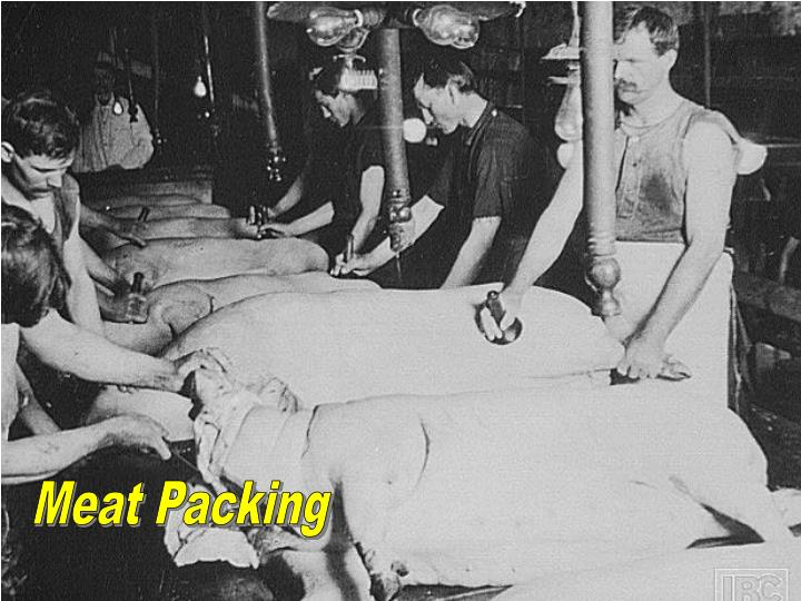 meat packing industry I'm just doing an online course on the jungle, sinclair's book where he exposed the meat-packing industry and was very interested to find any pictures now .