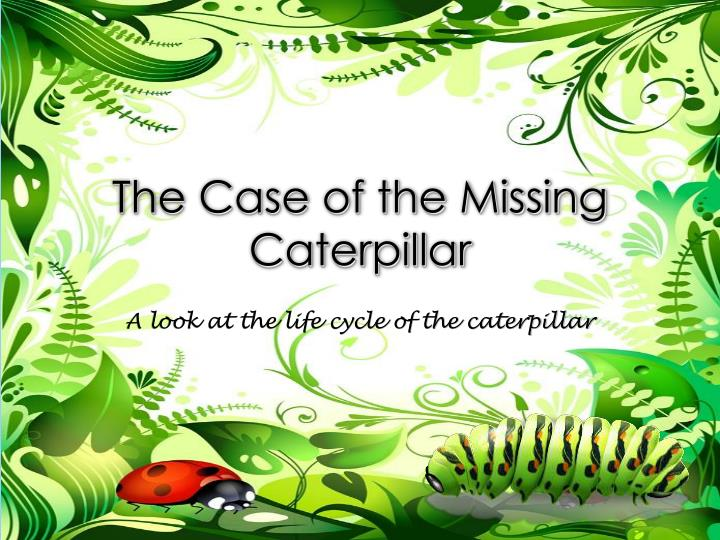the case of the missing caterpillar n.