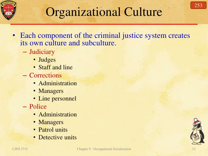 what is organizational culture in criminal justice