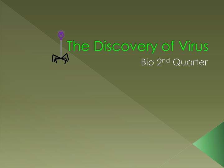 the discovery of virus n.