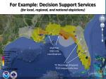 for example decision support services for local regional and national depictions