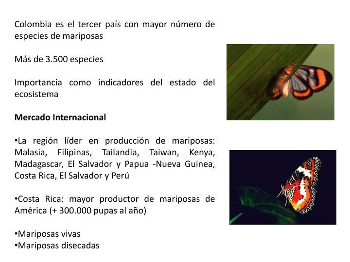 Colombia es el tercer país con mayor número de especies de