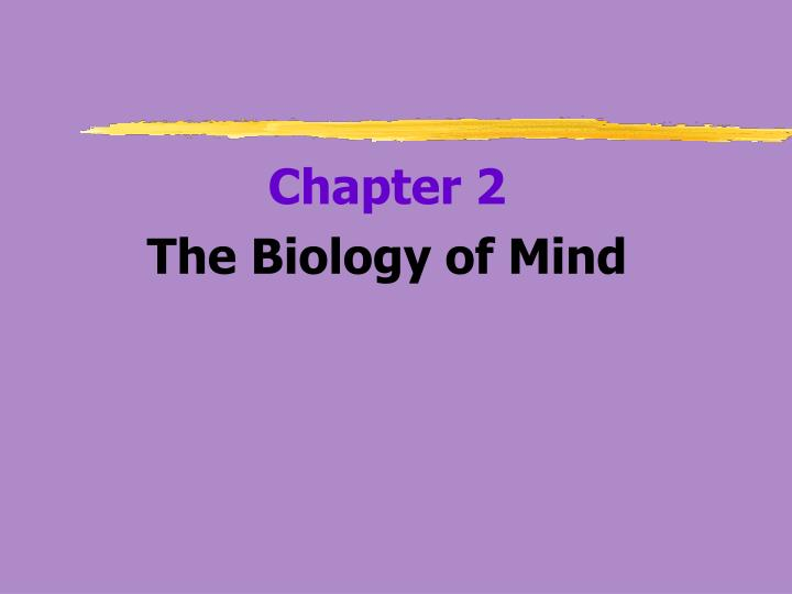 the biology of beauty essay Transcript of tok presentation: perception of beauty tok presentation yarhiel santa, alexis price, and kelcey howley real-life situation conclusion face transformation.