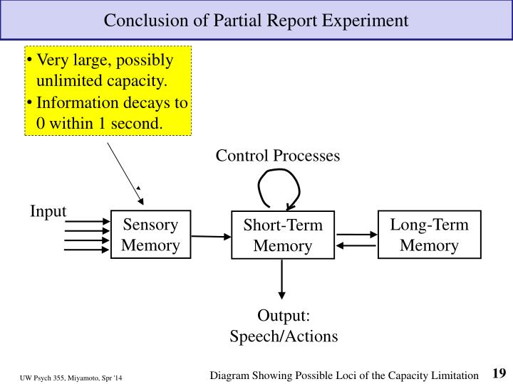 Conclusion of Partial Report Experiment