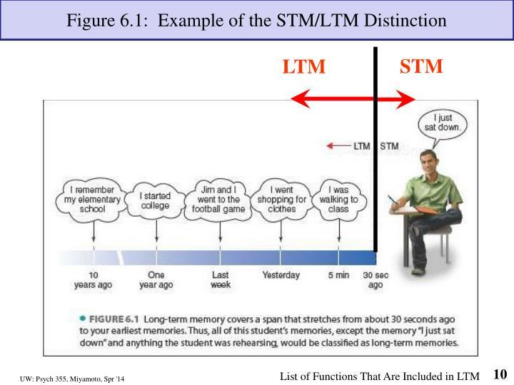Figure 6.1:  Example of the STM/LTM Distinction