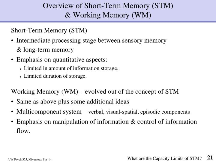 Overview of Short-Term Memory (STM)