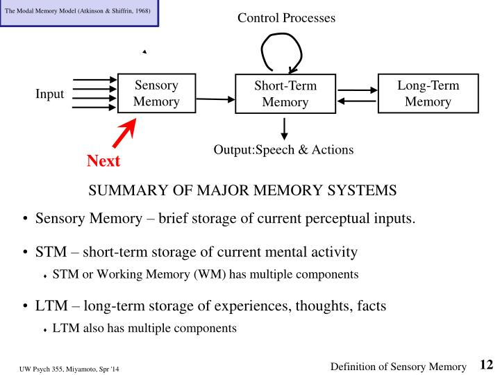 The Modal Memory Model (Atkinson & Shiffrin, 1968)
