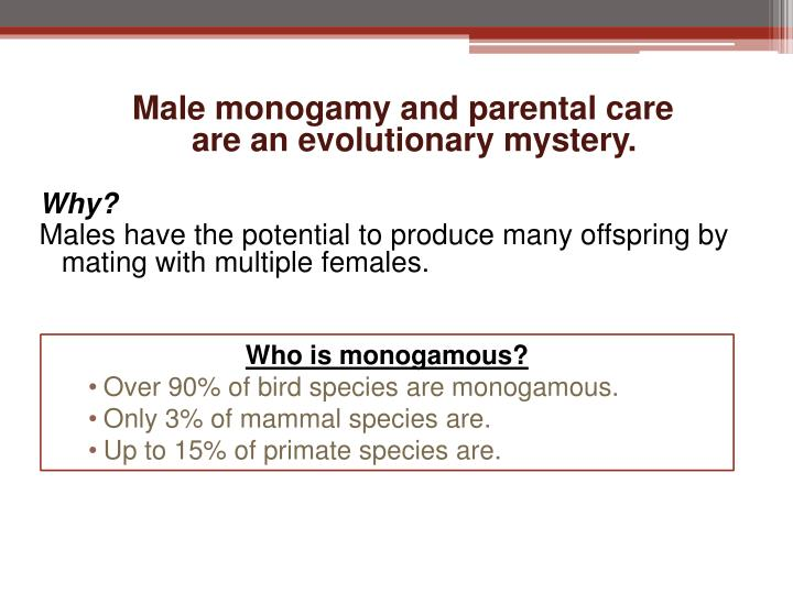 Male monogamy and parental care
