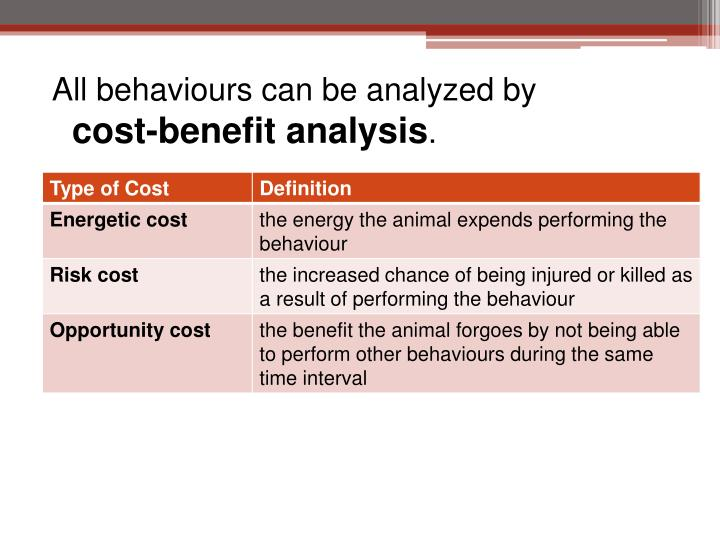 All behaviours can be analyzed by