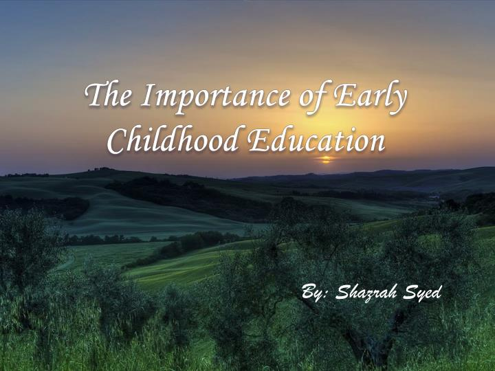 the importance of early childhood education n.