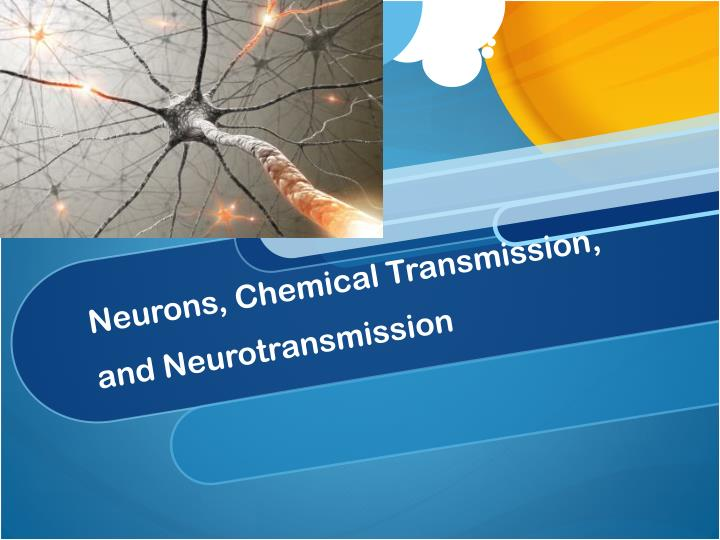 Neurons chemical transmission and neurotransmission
