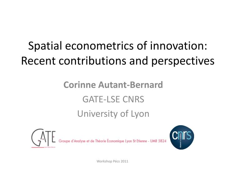 spatial econometrics of innovation recent contributions and perspectives n.