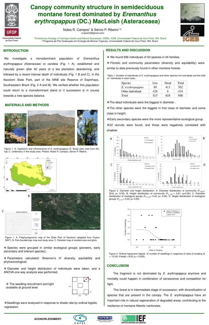 Canopy community structure in semideciduous montane forest dominated by