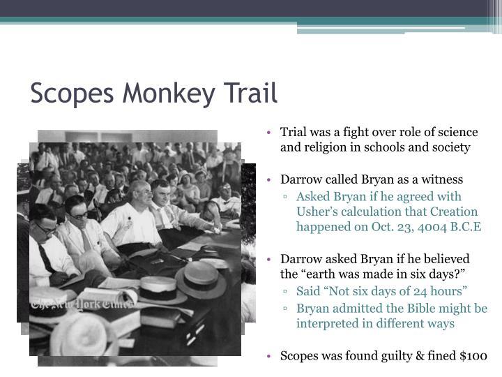 Scopes Monkey Trail
