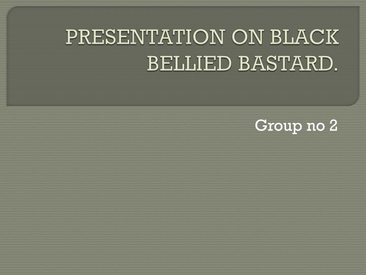 Presentation on black bellied bastard