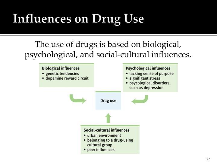 Influences on Drug Use