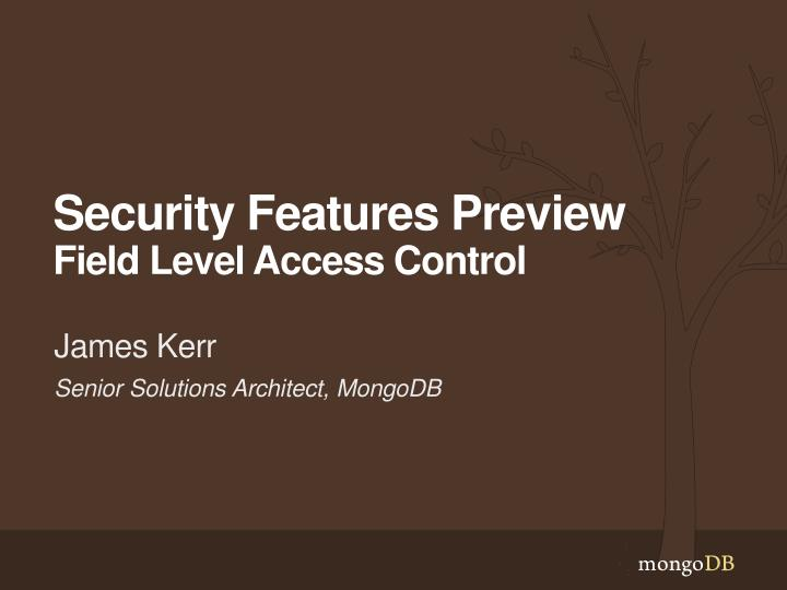 security features preview field level access control n.