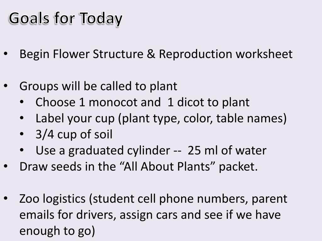 Basic Flower Structure Worksheet - Flowers Healthy