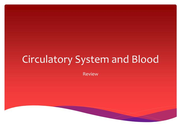 circulatory system and blood n.