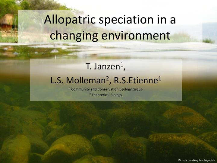 allopatric speciation in a changing environment n.