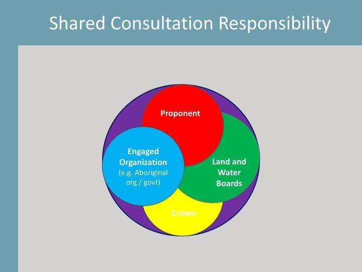 Shared Consultation Responsibility