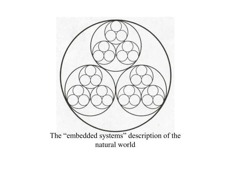 """The """"embedded systems"""" description of the natural world"""
