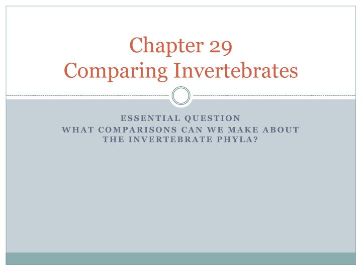 chapter 29 comparing invertebrates n.