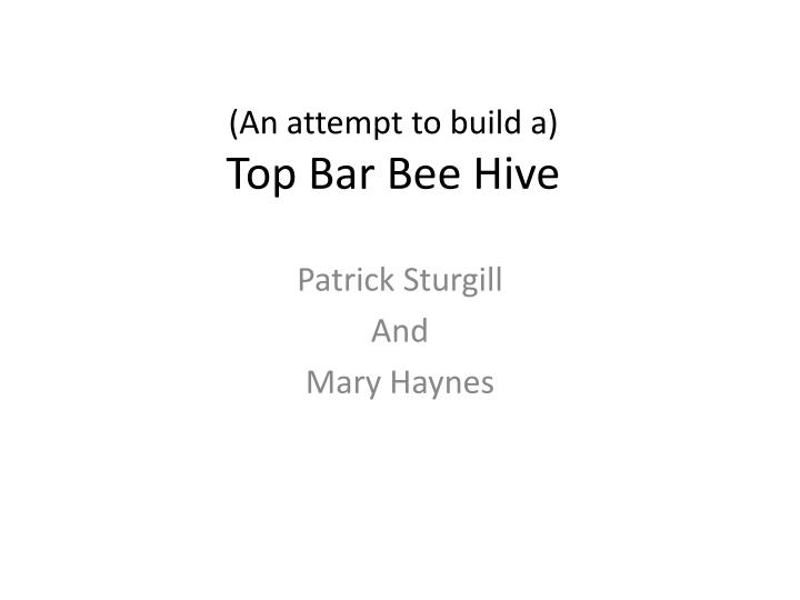 an attempt to build a t op bar bee hive n.