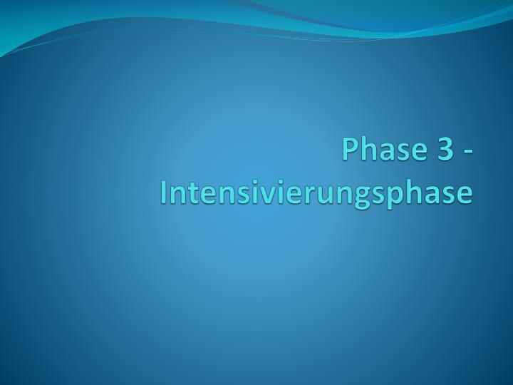 Phase 3 - Intensivierungsphase