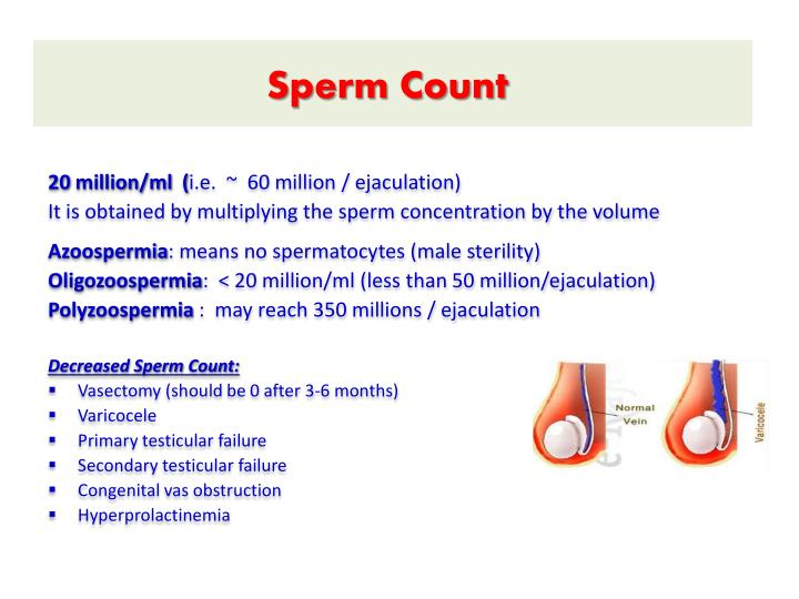350 million concentration sperm