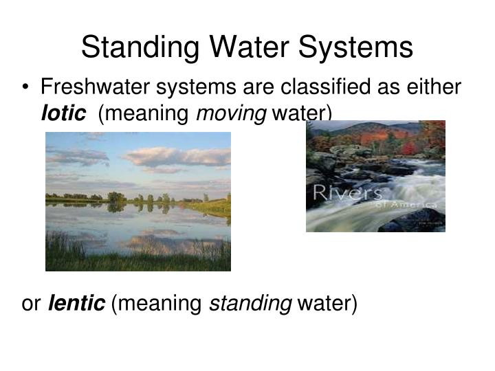 standing water systems n.