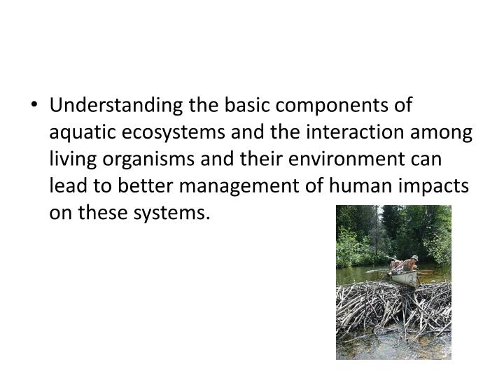 Understanding the basic components of aquatic ecosystems and the interaction among living organisms and their environment can lead to better management of human impacts on these systems.