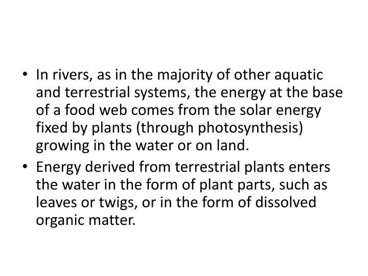 In rivers, as in the majority of other aquatic and terrestrial systems, the energy