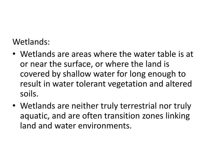 Wetlands: